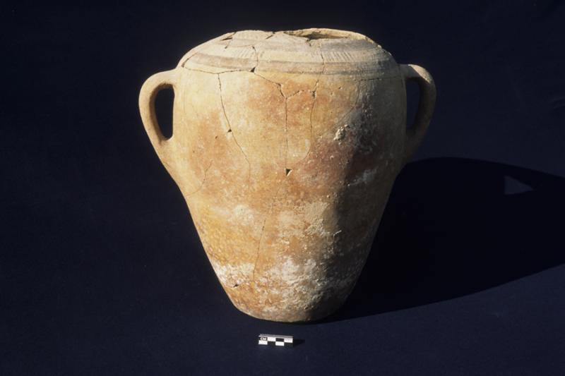 Fig. 6. Painted amphora, fourth Middle Bronze phase, Northwest Area A (B. Stuart).