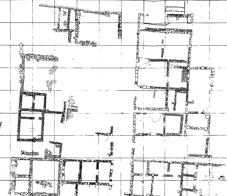 Fig. 36. Urban plan at Monte Saraceno di Ravanusa, which was influenced by the Akragantine tradition around the end of the sixth century B.C.E. (adapted from Fisher-Hansen 2002, fig. 9).