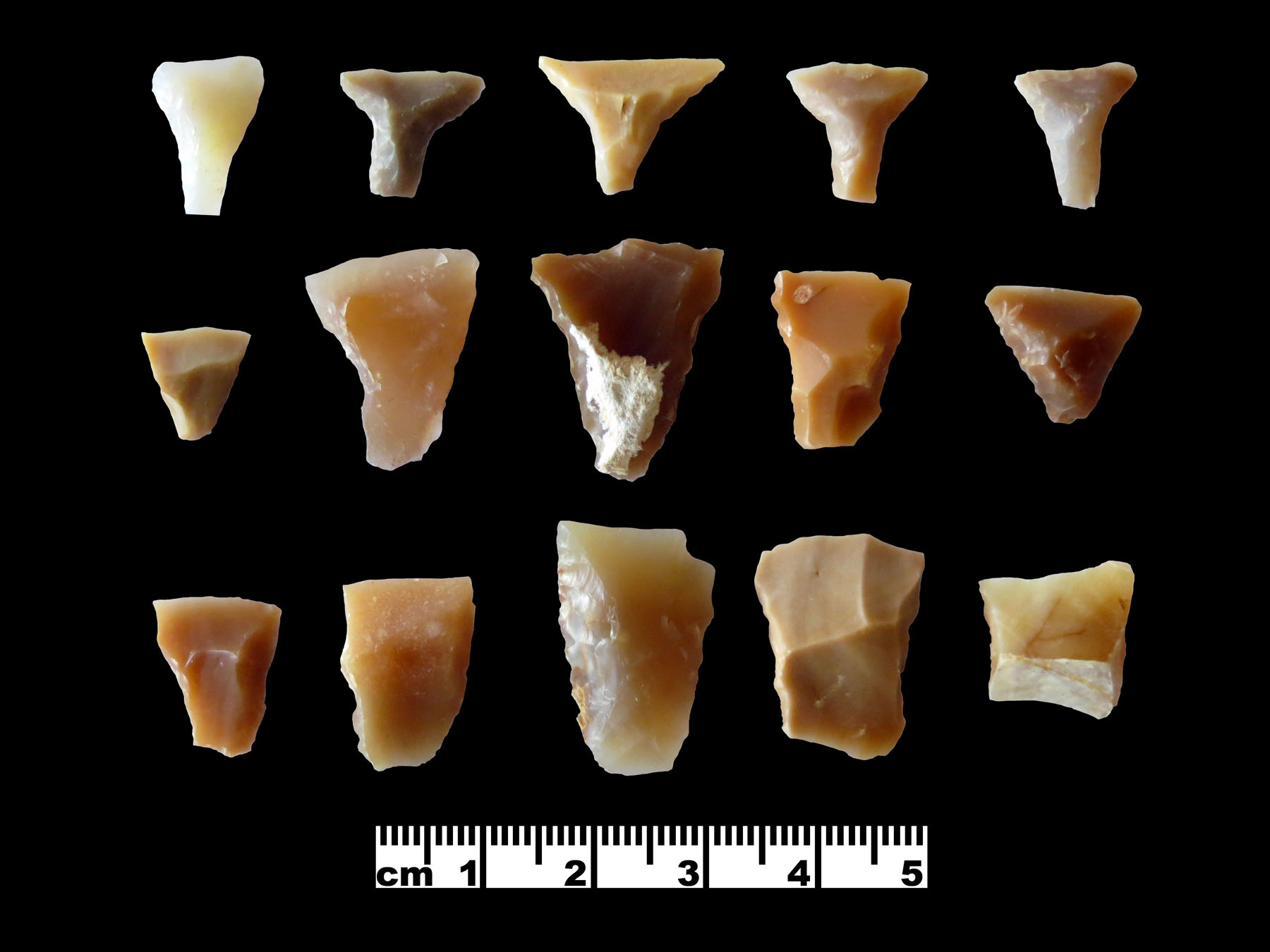 Fig. 2. Transverse arrowheads from Wisad Pools (courtesy Eastern Badia Archaeological Project).