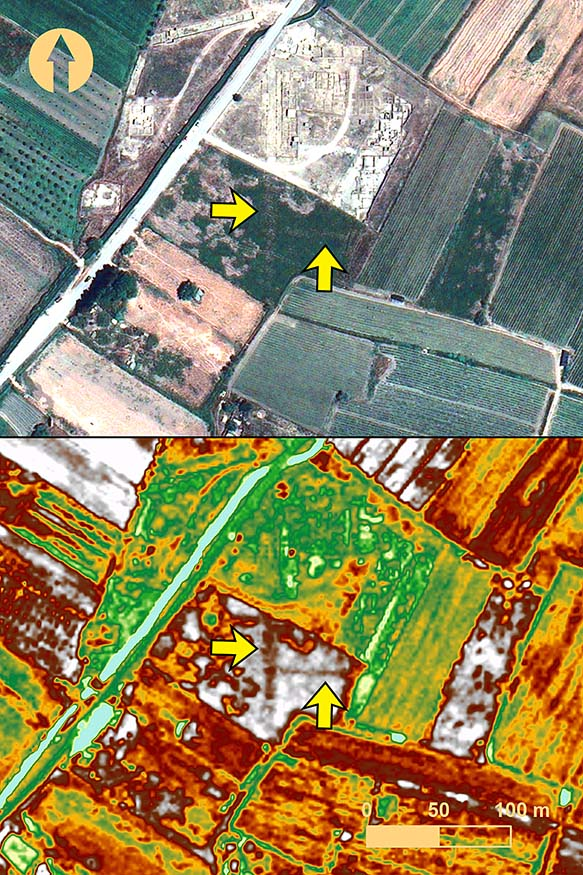 Fig. 2. Buried streets identified at Elis (yellow arrows) from vegetation stress in a field south of the excavation zone, from GeoEye-1, 20 July 2009. Although the streets are discernable in true-color RBG (top), other features are more easily seen when feature enhancement is applied—weighted difference vegetation index (WDVI), in this example (bottom) (includes copyrighted material of DigitalGlobe, Inc.; all rights reserved).
