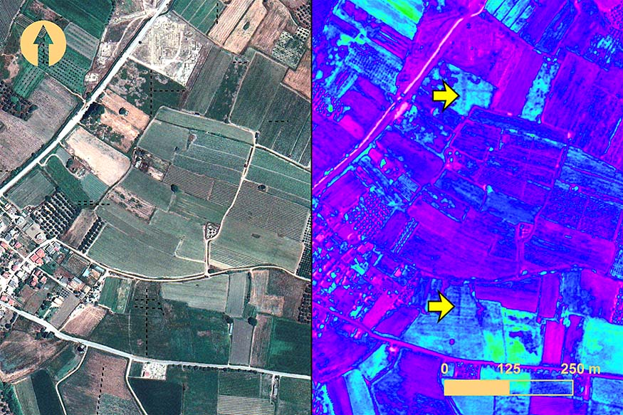 Fig. 15. The southern region of Elis from a GeoEye-1 image taken 20 July 2009: left, true-color RGB; right, weighted difference vegetation index (WDVI) feature enhancement. Yellow arrows indicate the location of anomalies 39 and 44 (includes copyrighted material of DigitalGlobe, Inc.; all rights reserved).