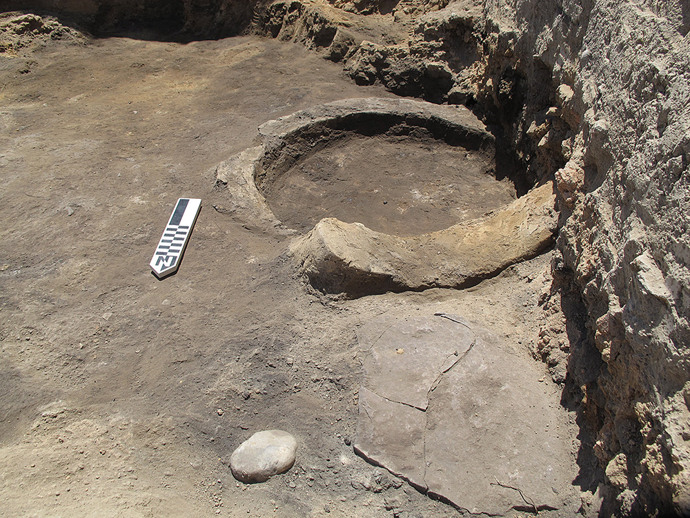 Fig. 6. View of NSS-8 hearth (Locus 66) during excavation.