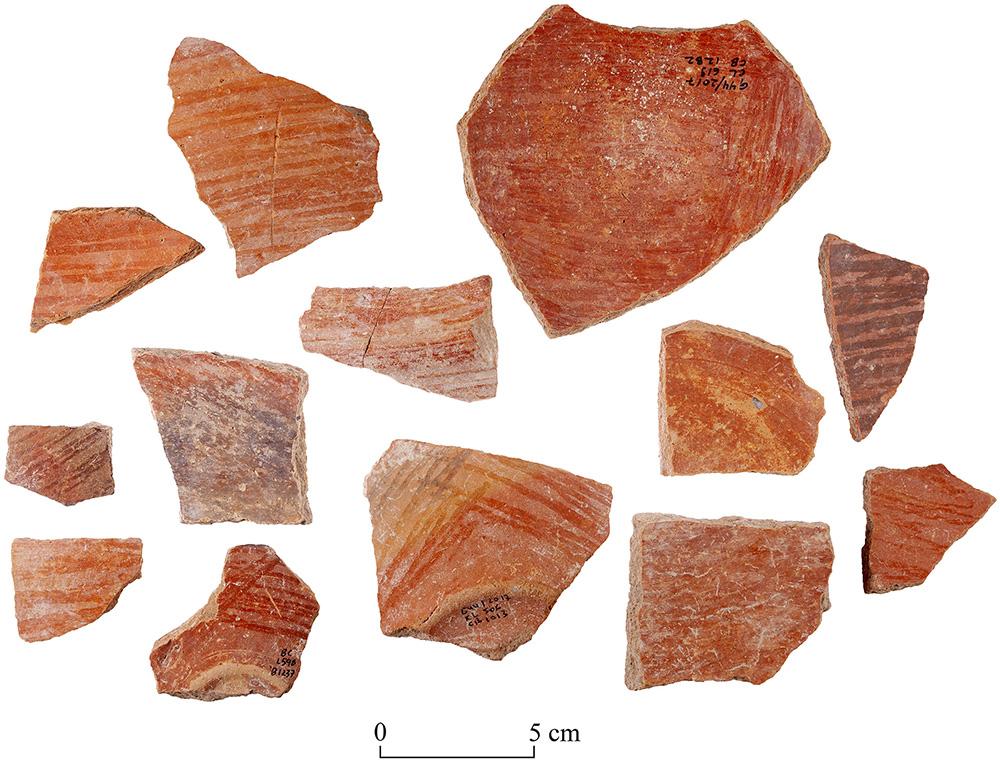 Fig. 14. Sherds of Level V pottery with typical decoration of red slip and irregular hand burnish (T. Rogovski).