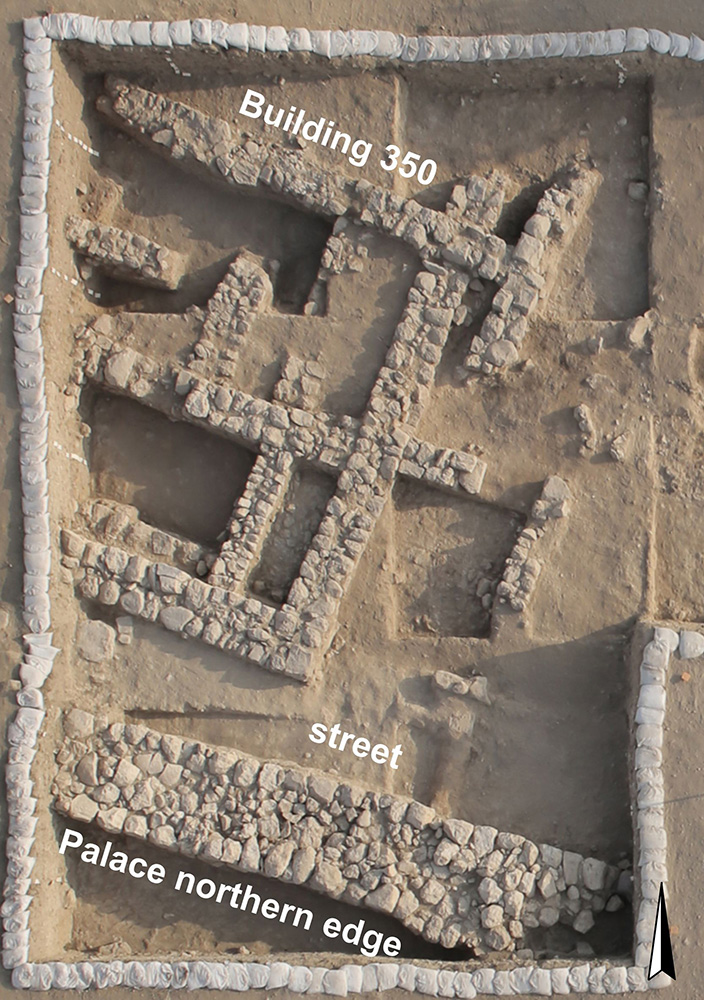 Fig. 16. The western side of Area AA in 701 BCE: the northern edge of the palace of the kings of Judah, a street, and Building 350. White sandbags secure the balks.