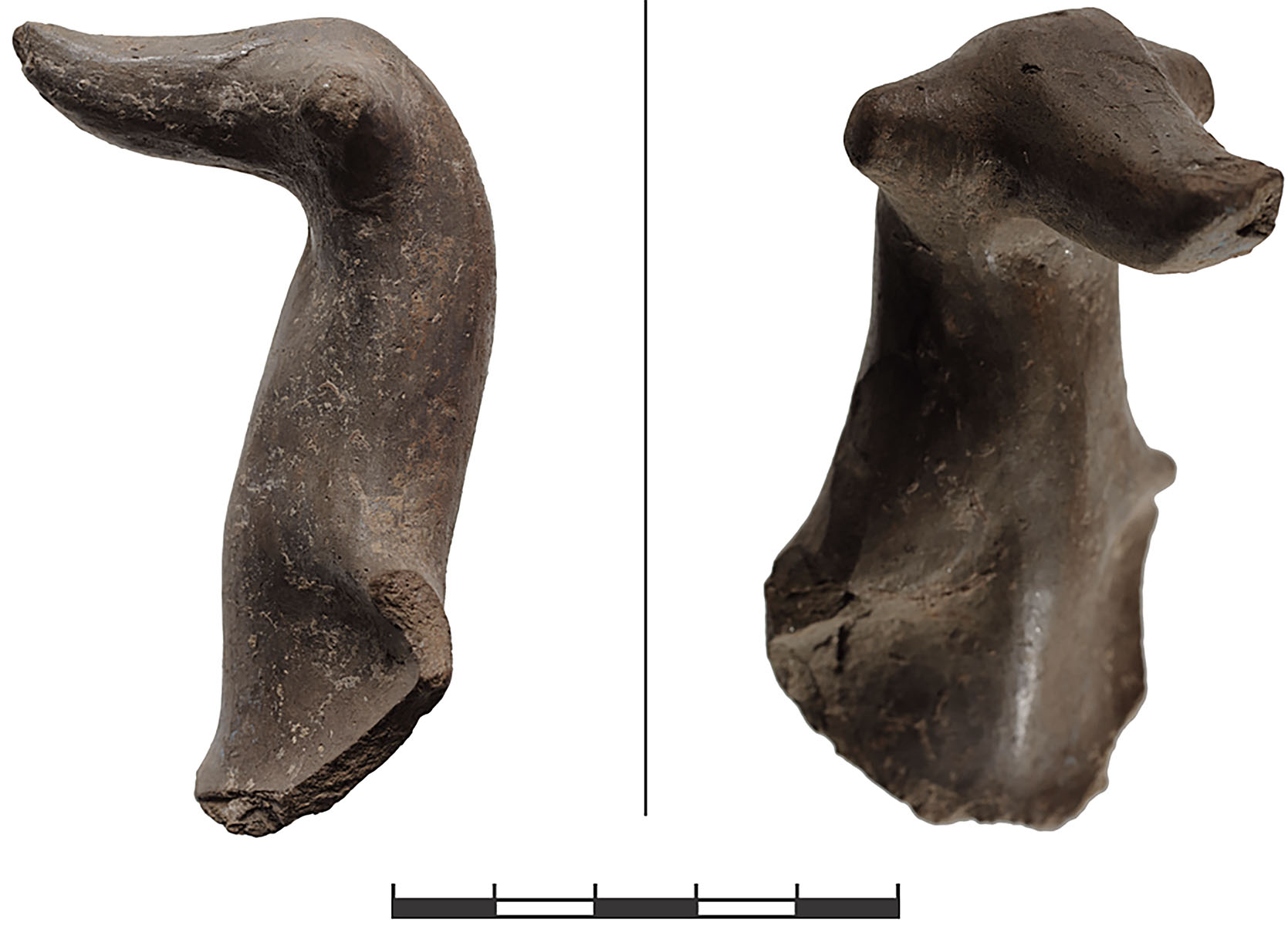 Fig. 8. Animal protome from Gray Ware cup from the LB 1 phase (81.551.40.10) (N. Gail; © Gygaia Projects).