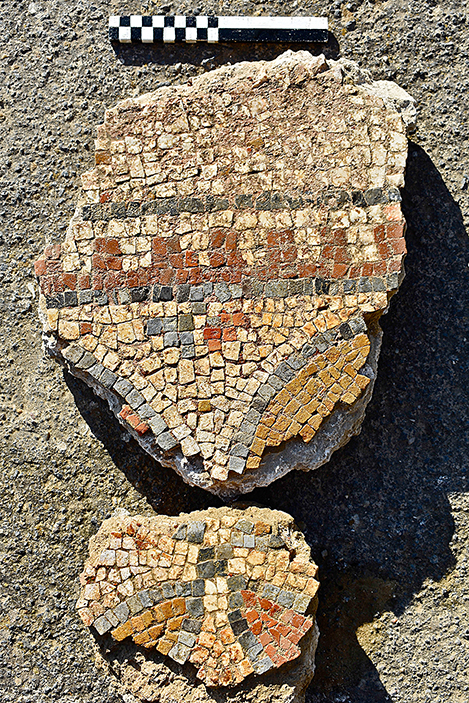Fig. 11. Mosaic fragments from the first tepidarium (Room 5) (scale: 20 cm).