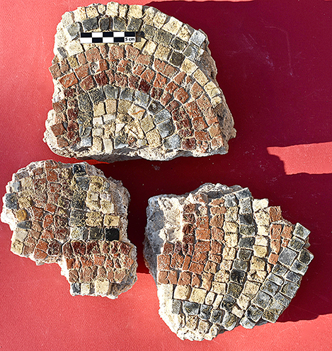 Fig. 14. Mosaic fragments from the second tepidarium (Room 6) (scale: 5 cm).