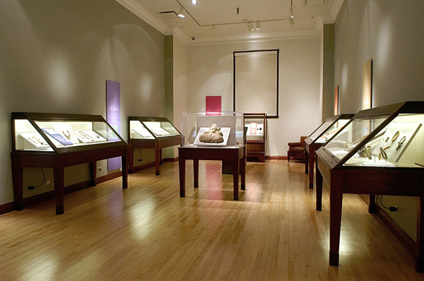 Fig. 1. Installation view of the exhibition in the Booker Gallery (© The Field Museum of Natural History).