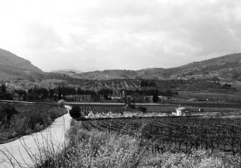 Modern view of prehistoric Tsoungiza.