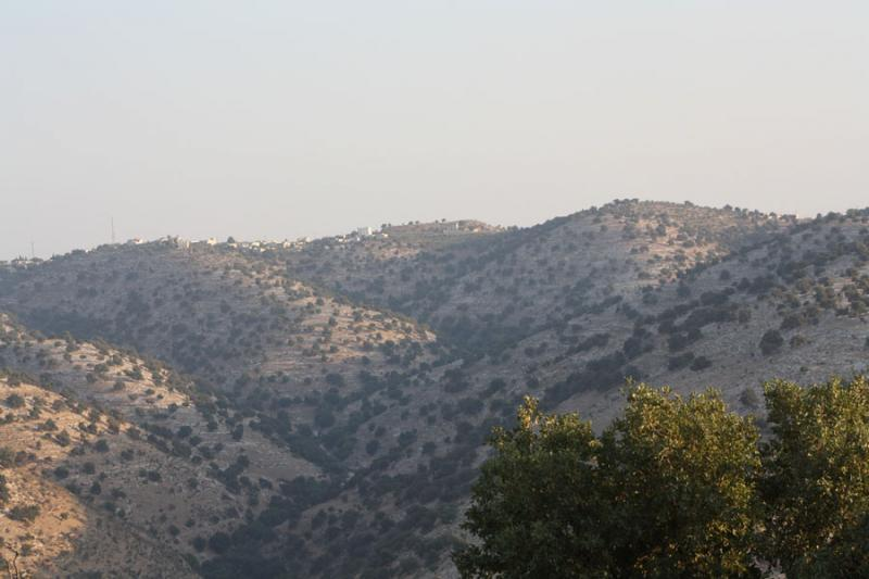 Fig. 2. Umm Qeis/Gadara and its hinterland. View to the south from 'Arqub Rumi to the hilltop sanctuary on al-Qabu (C. Bührig).