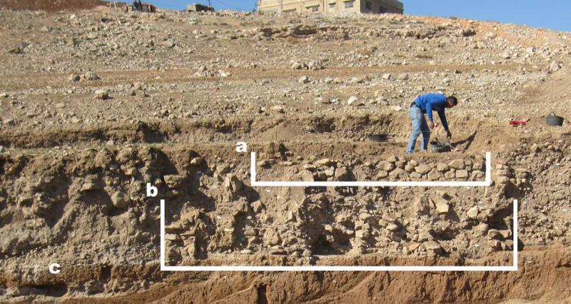 Fig. 30. West section III.1 in the West Field: <i>a</i>, remains of the Yarmoukian structure containing the burial; <i>b</i>, the Pre-Pottery Neolithic C house; <i>c</i>, the area sampled from Floor F-2 (G. Rollefson).