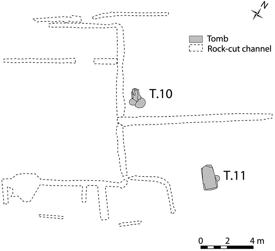 Fig. 1. Plan of Area A at Gabii, showing the location of Tombs 10 and 11.