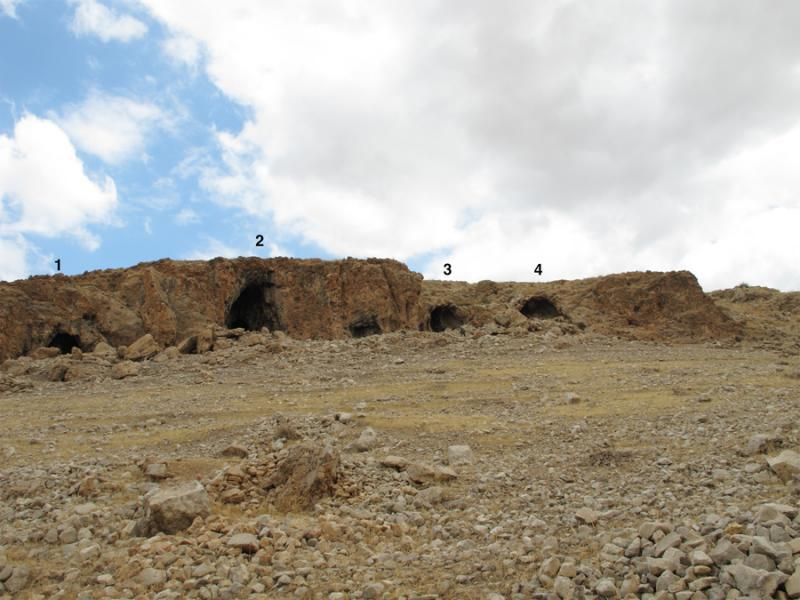 Fig. 7. South-facing Caves 1–4 of Mughr el-Hamamah. Cave 5 (<i>right</i>) is located approximately 30 m to the east. Only Cave 2—the main cave—has substantial in situ prehistoric deposits, and test excavations focused on the front chamber of this cave (courtesy Mughr el-Hamamah Project).