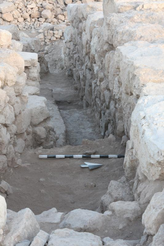 Fig. 39. Tall al-'Umayri, field H, southern face of Wall 4 (courtesy Tall al-'Umayri Project).